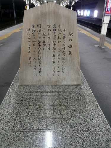 P1100351.jpg