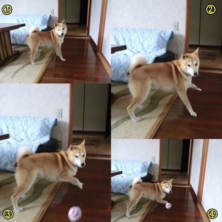 page_20110517002907.jpg