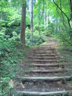 kamoyama3.jpg