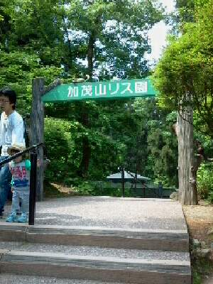 kamoyama6.jpg