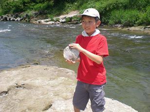 本当に大きな貝の化石でした!!!