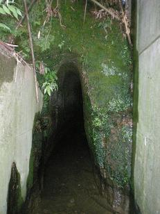 隧道の出口付近、当日はこちらから入ります。