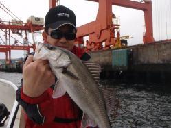 コピー ~ 2011.5.3レンタルボート 004
