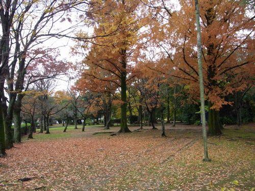 松井神社2