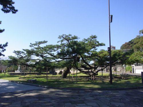 石橋記念公園15