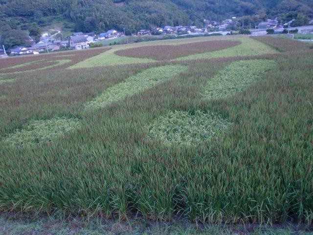 20110910福吉 011