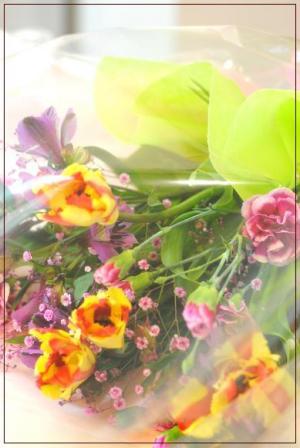 DSC_0780_convert_20120330213836.jpg