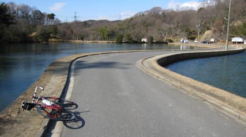 2011_01_19_07.jpg