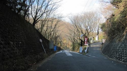 2011_01_19_09.jpg