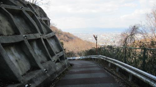 2011_01_19_10.jpg