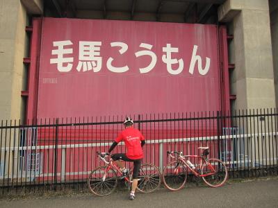 2011_11_02_29.jpg