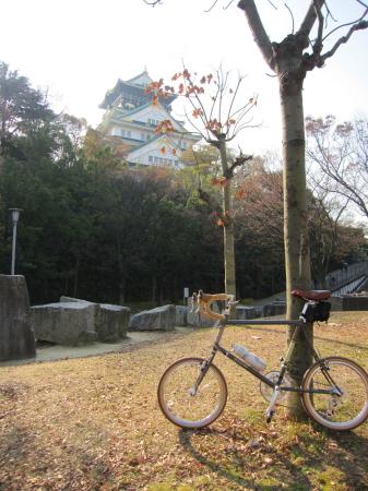 2011_12_14_05.jpg