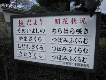2012_04_04_05.jpg