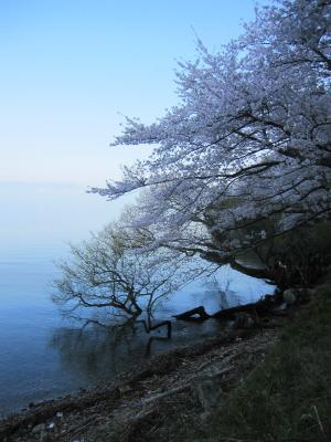 2012_04_19_06.jpg