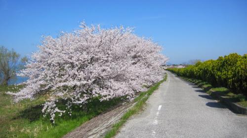 2012_04_19_11.jpg