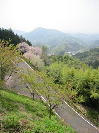 2012_04_25_05.jpg