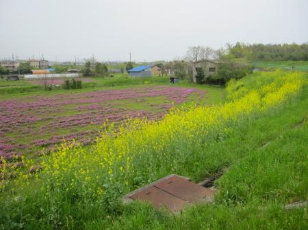 2012_04_25_14.jpg