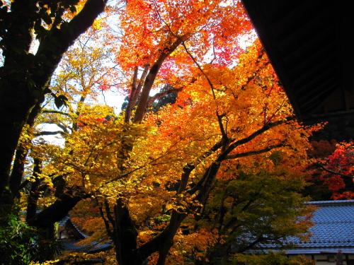 2012_11_22_13.jpg