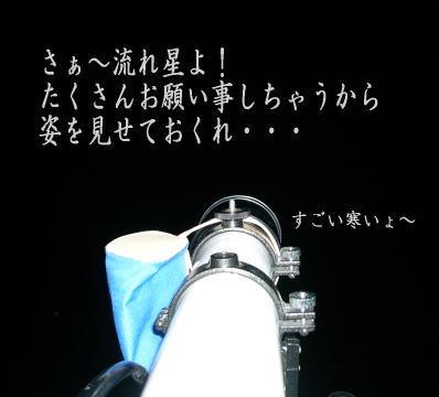 nagarebosi201213.jpg