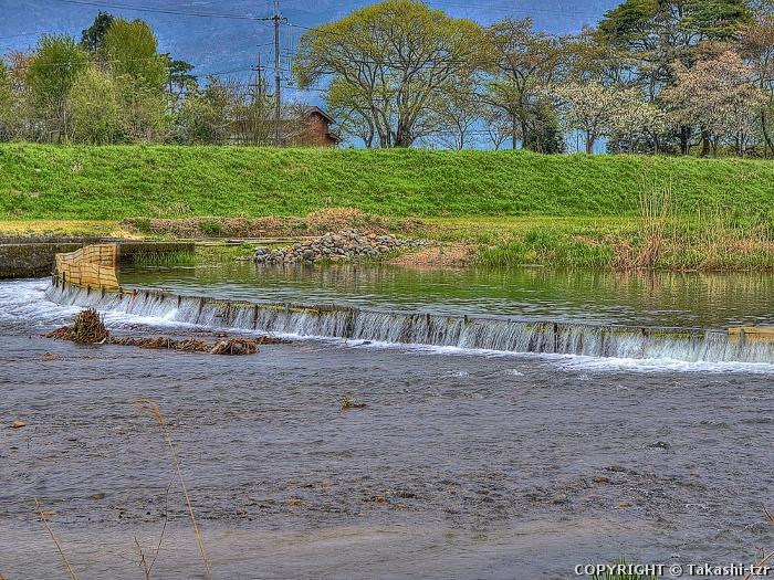 高島市海津・西浜・知内の水辺景観2