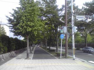 2012020903.jpg
