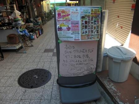 さくらさん9/25その2