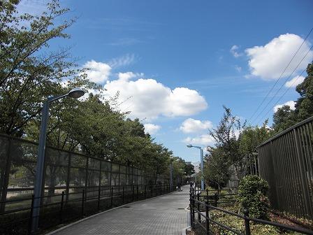 日本橋巡回10/2天王寺~恵美須町4
