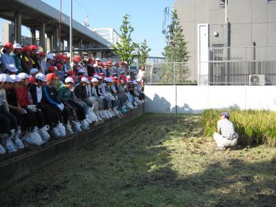 学童農園⑥