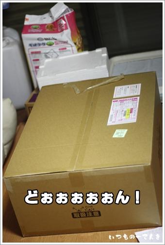 001_20120103225748.jpg