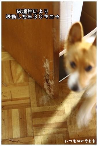 010_20120125181837.jpg