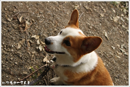 051_20111106200751.jpg