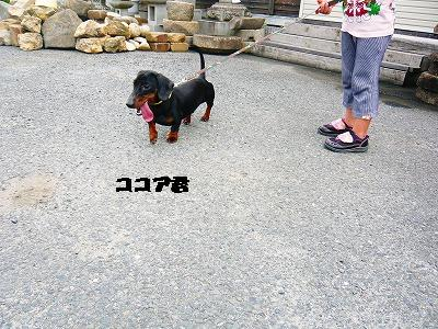 220622 (8)