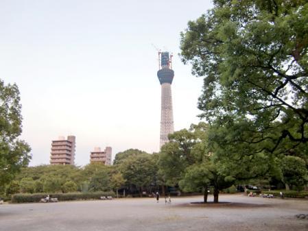 2010090426