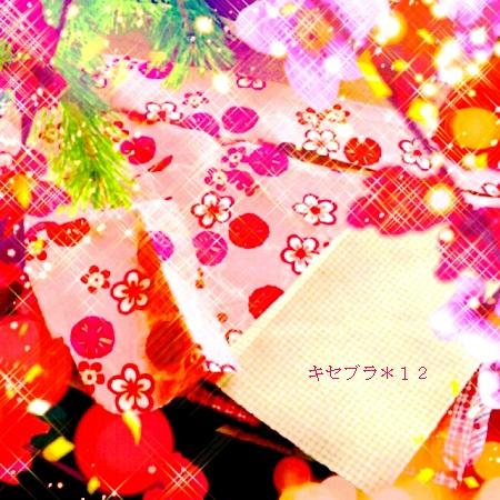 2014-01-22085329a.jpg