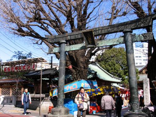 120301yushima02.jpg