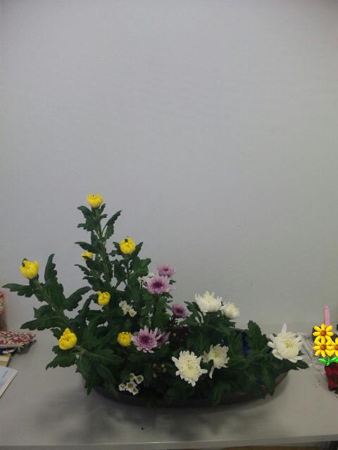 DVC00644_20141017080212243.jpg