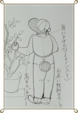 rosesenntei 005