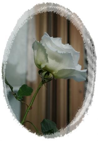 s-028.jpg