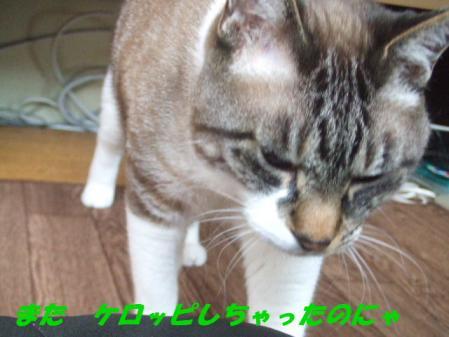 DSCF72601.jpg
