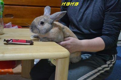 001_20120220111031.jpg
