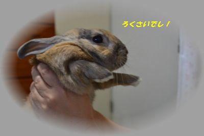 002_20120306200127.jpg