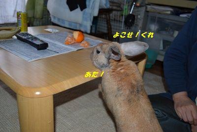 003_20120110145127.jpg