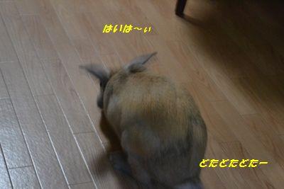 003_20120613200724.jpg