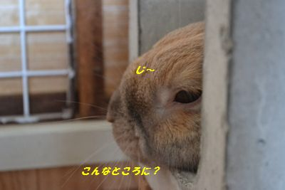 004_20120714193951.jpg