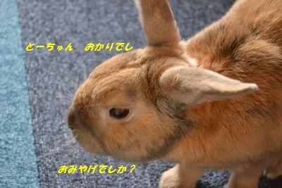 006_20120707164621.jpg
