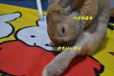 007_20120309201532.jpg