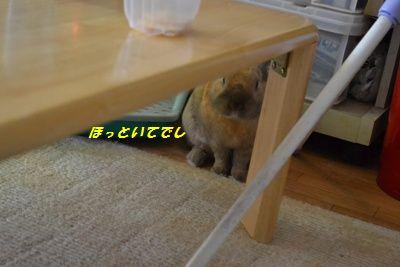 011_20120207154232.jpg
