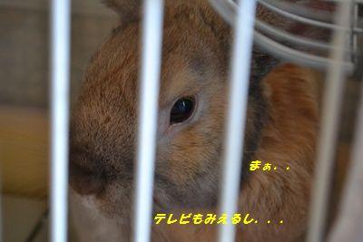 018_20120714194036.jpg
