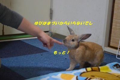 021_20120127144200.jpg