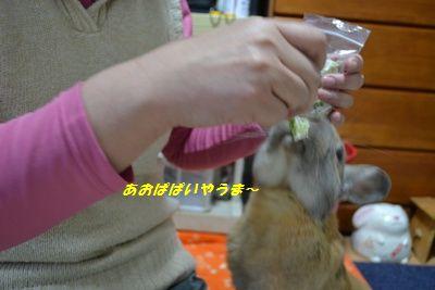 026_20120324133708.jpg